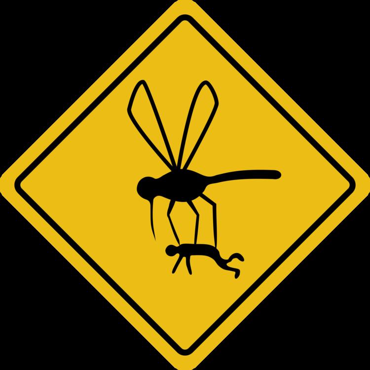 Invertebrate,Area,Symbol