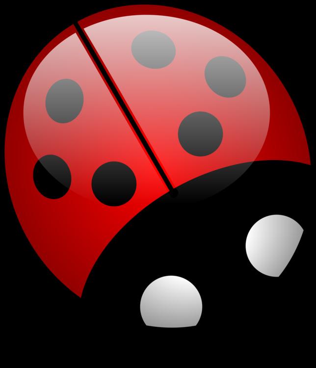 Dice Game,Ladybird,Invertebrate