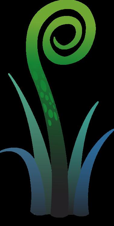 Plant,Grass,Leaf