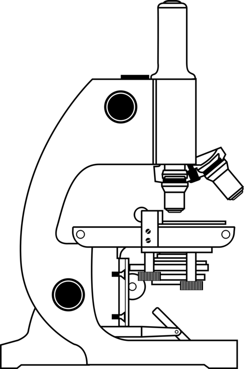 optical microscope color drawing download free mercial clipart Diaghram Microscope optical microscope color drawing download