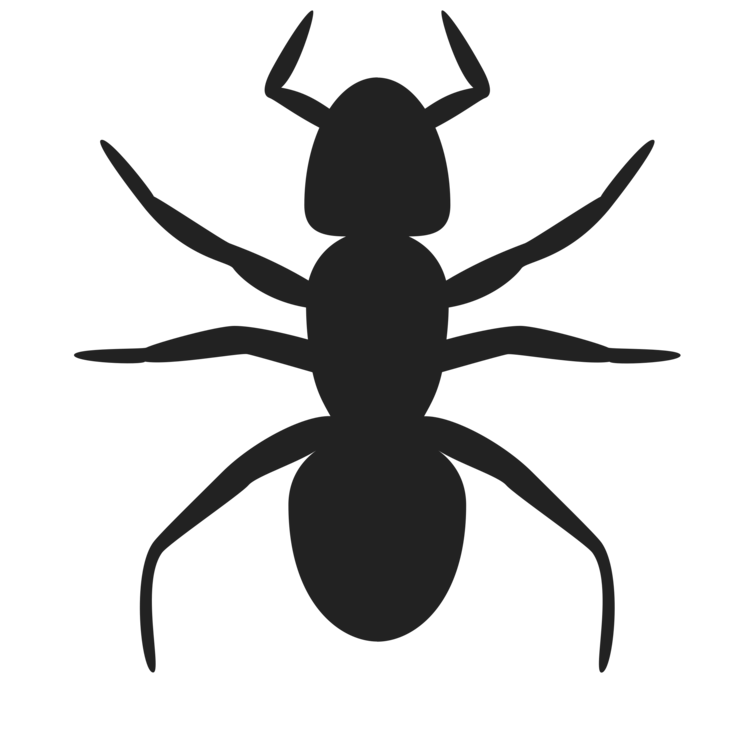 Fly,Silhouette,Symbol