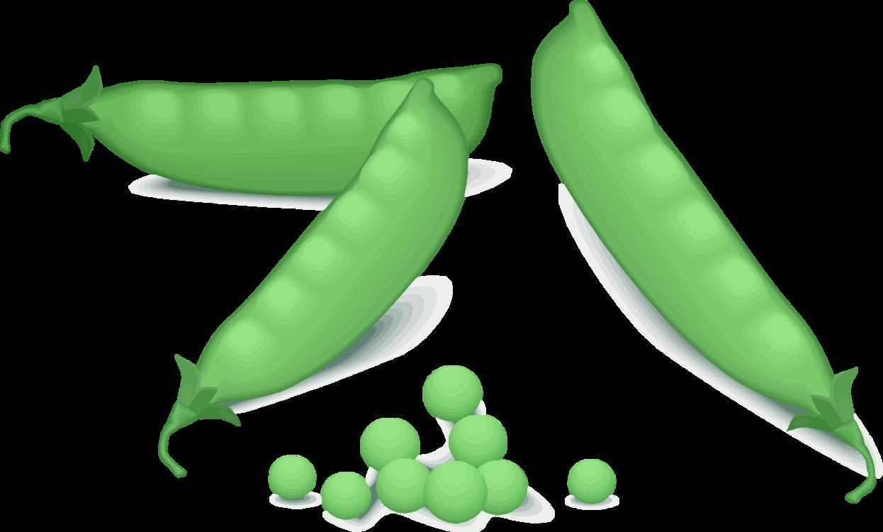 Plant,Food,Lima Bean
