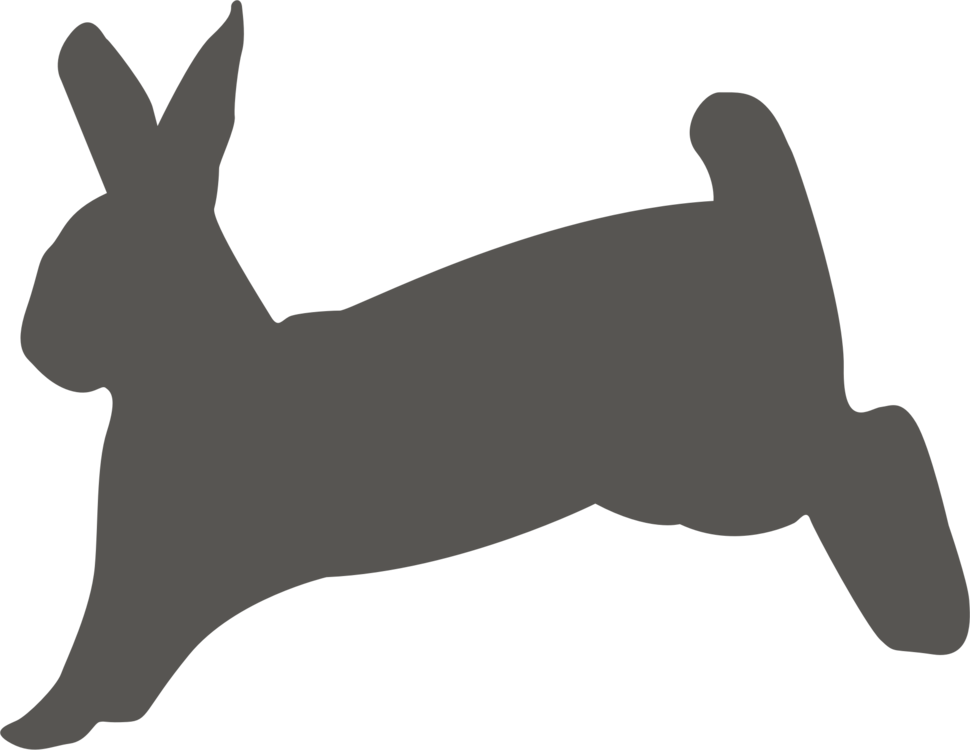Silhouette,Rabits And Hares,Paw