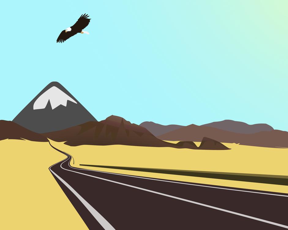 Flight,Ecosystem,Sky