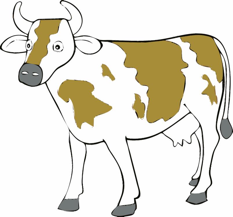 Human Behavior,Livestock,Pack Animal