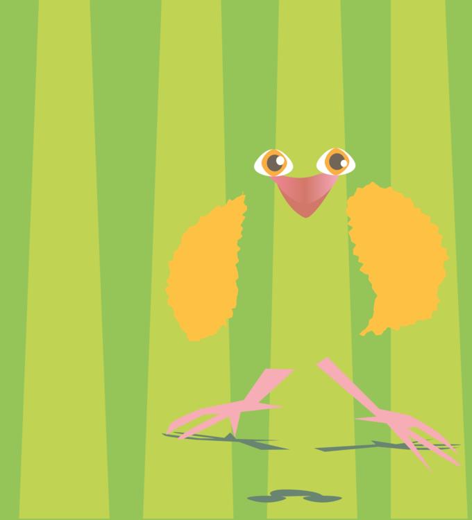 Bird Of Prey,Grass,Vertebrate