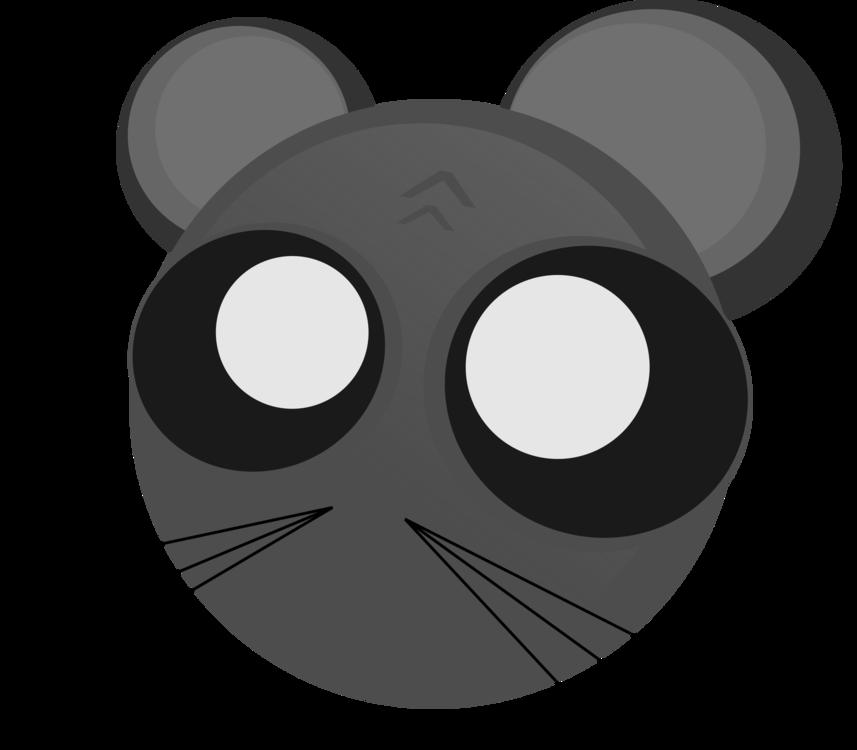 Carnivoran,Mouse,Eye