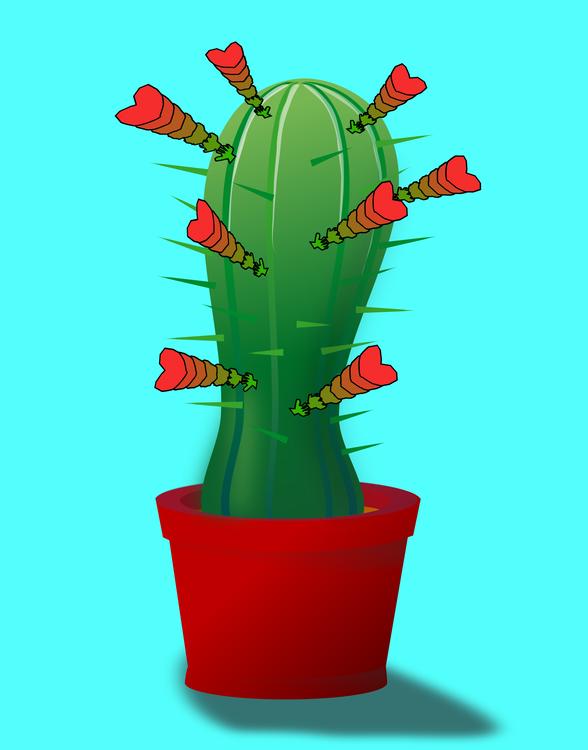 Plant,Caryophyllales,Flowerpot