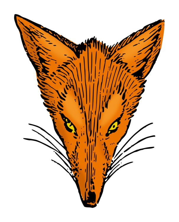 Head,Wildlife,Wing