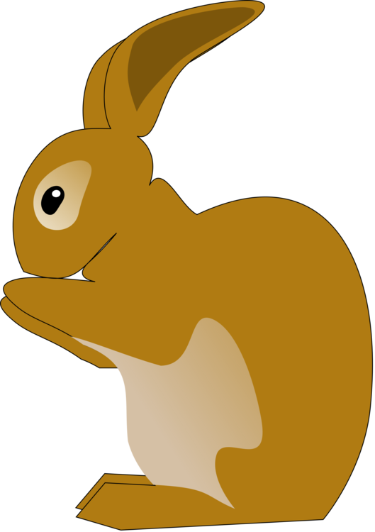 Rabits And Hares,Carnivoran,Whiskers