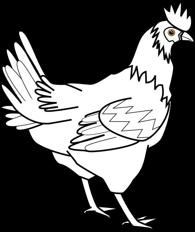 Art,Fowl,Beak