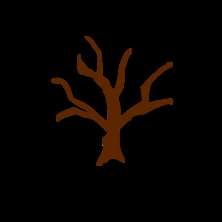 Plant,Tree,Hand