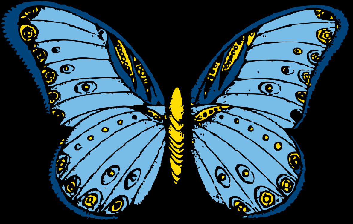 Butterfly,Symmetry,Artwork