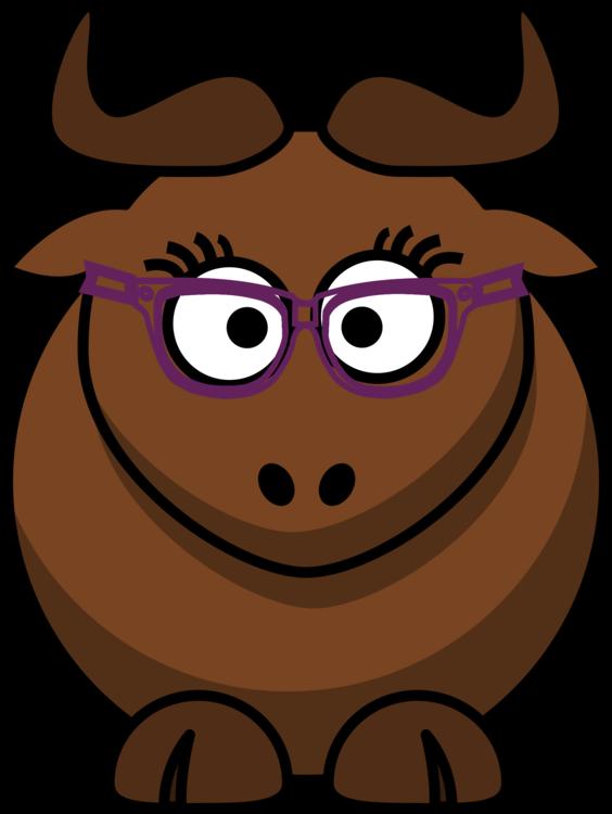 Wildlife,Vision Care,Eyewear