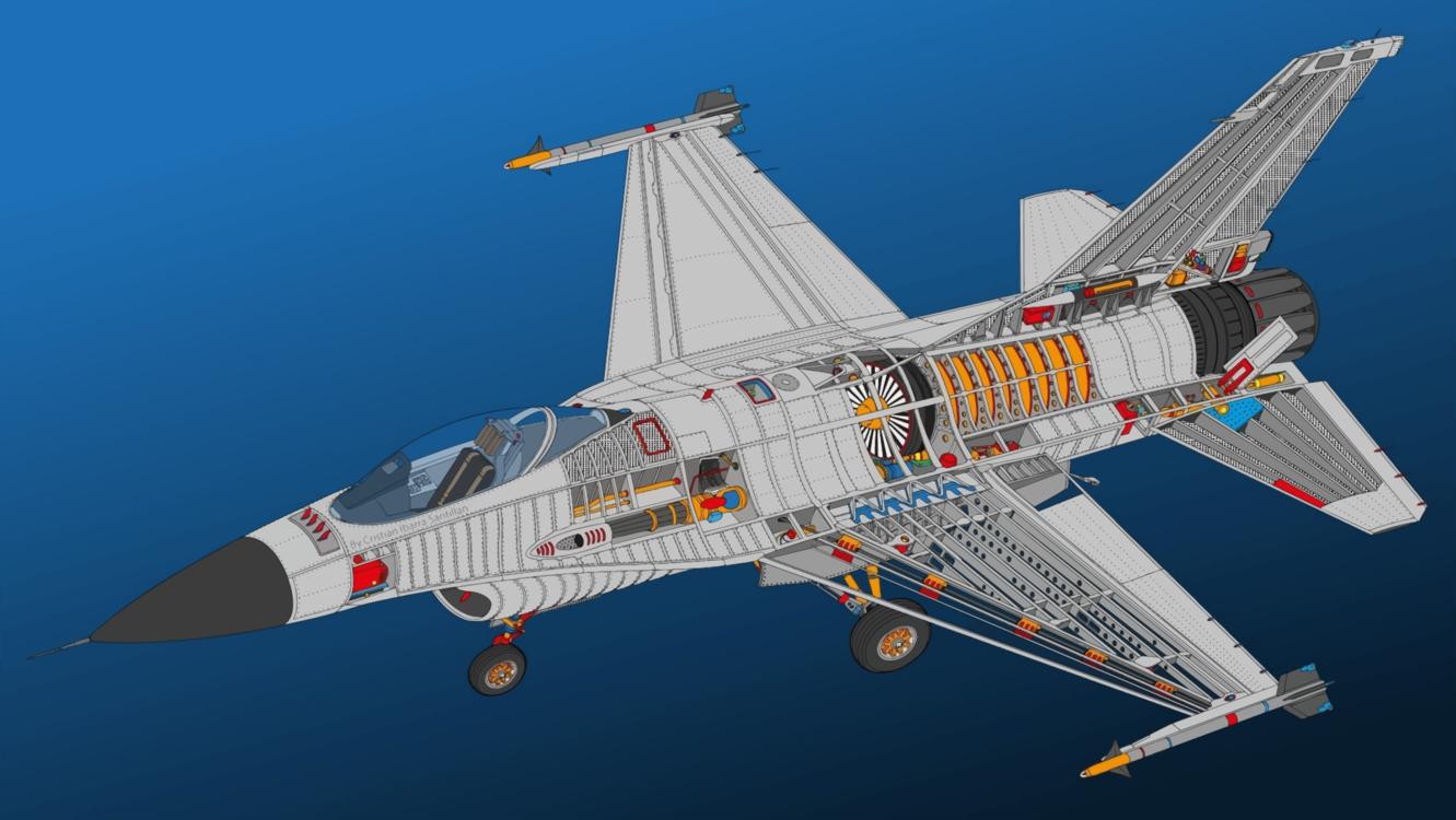 Grumman F 14 Tomcat,Jet Aircraft,Flap