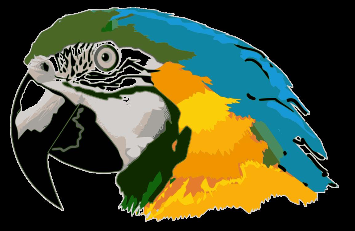 parrot blue and yellow macaw bird budgerigar free commercial clipart rh kisscc0 com Elephant Clip Art Macaw Clip Art