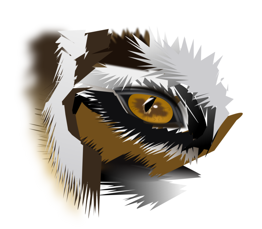 Cat Tiger Eye Drawing Download Free Commercial Clipart Cat