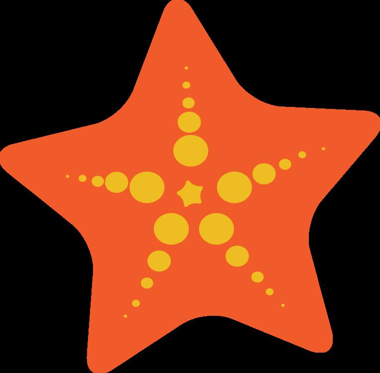 Star,Symmetry,Starfish