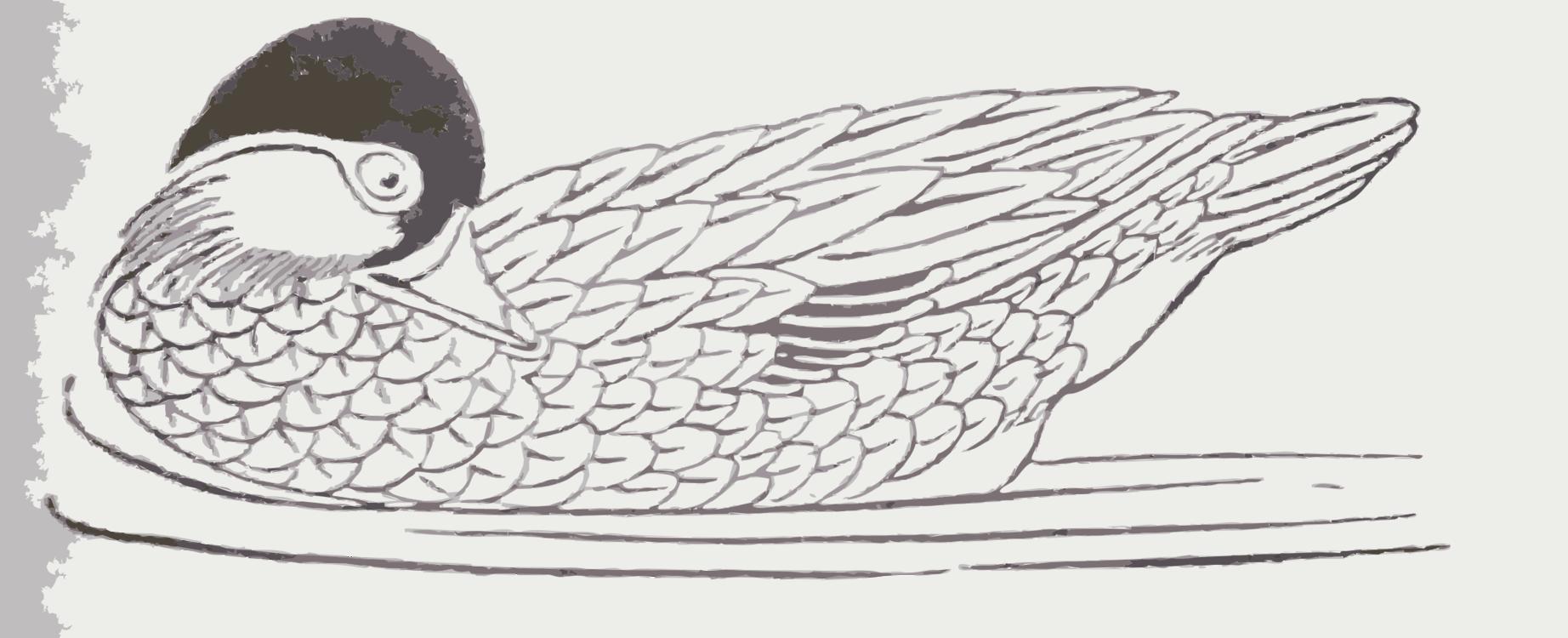 Art,Livestock,Fowl
