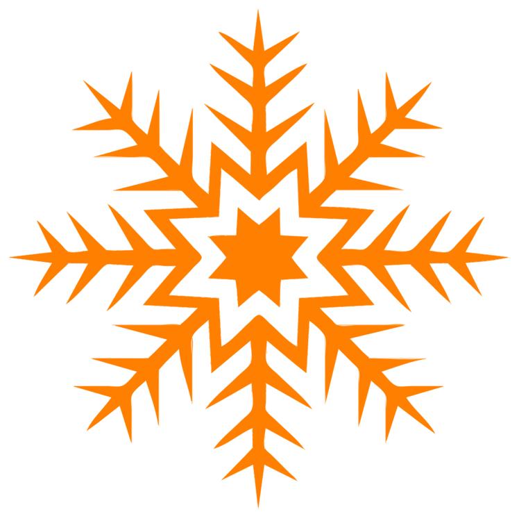 Leaf,Symmetry,Tree