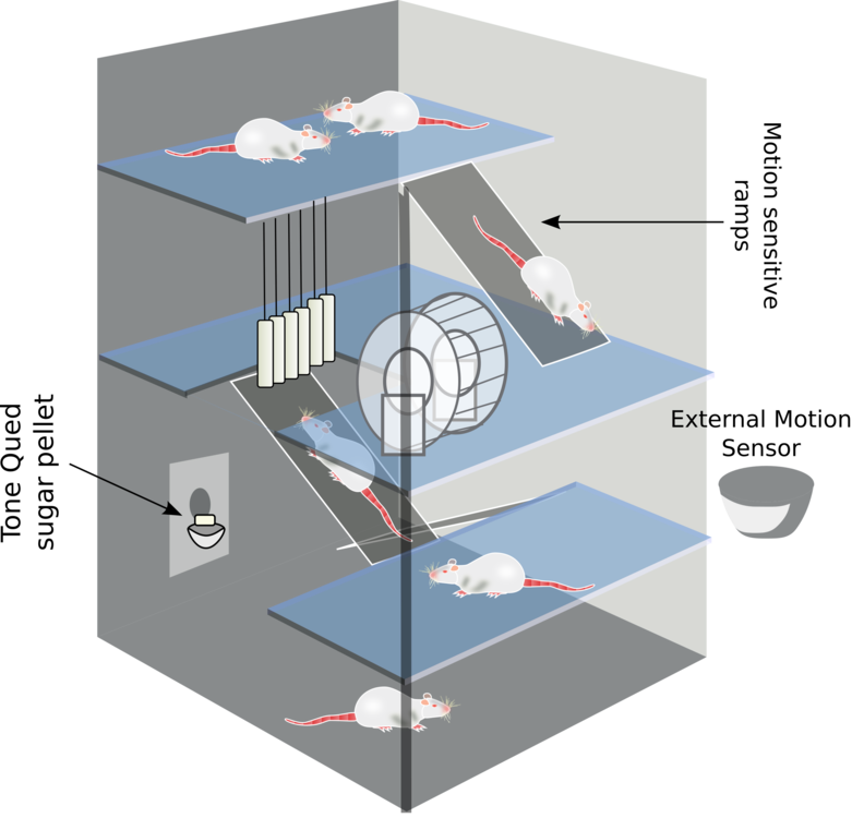 environmental enrichment computer icons diagram natural environment download