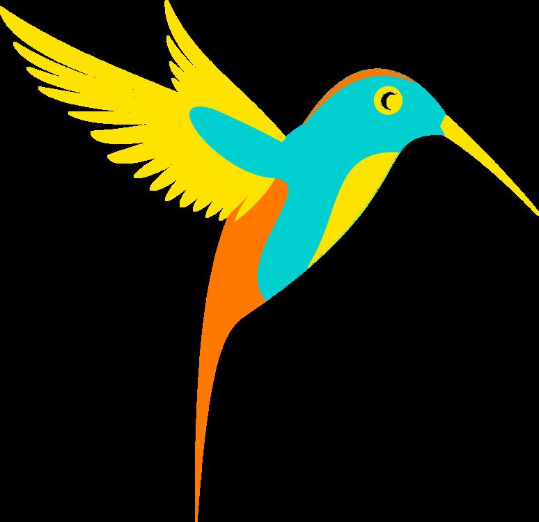 Pollinator,Macaw,Sky
