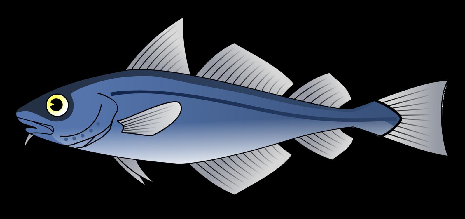 Marine Biology,Organism,Seafood