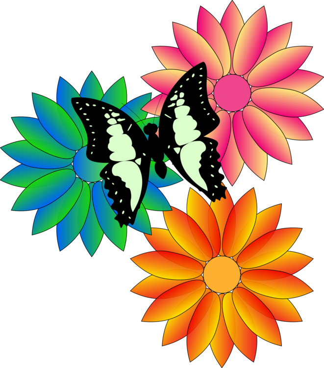 Symmetry,Petal,Moths And Butterflies