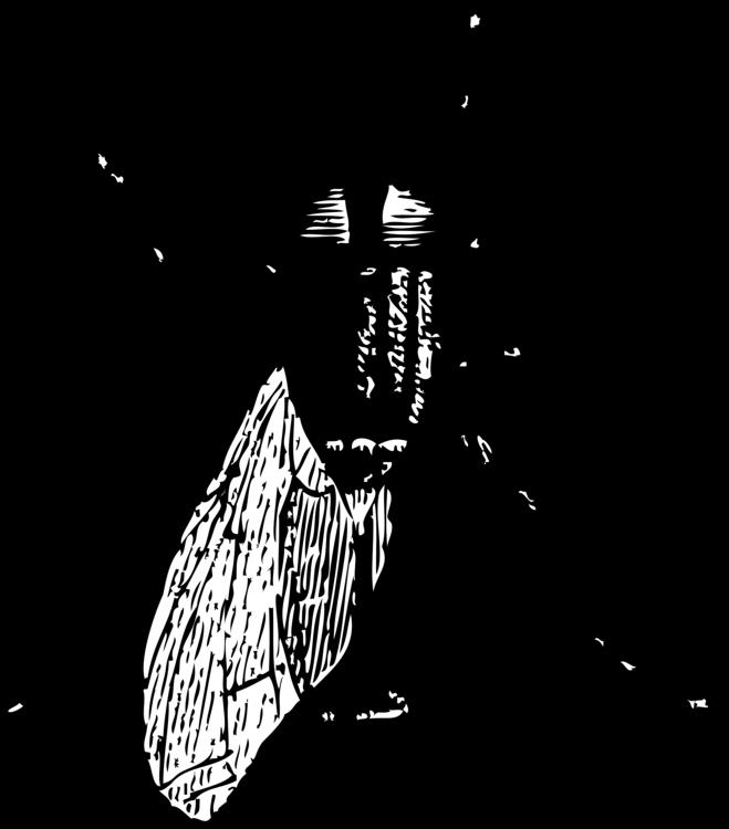 Fly,Line Art,Beetle
