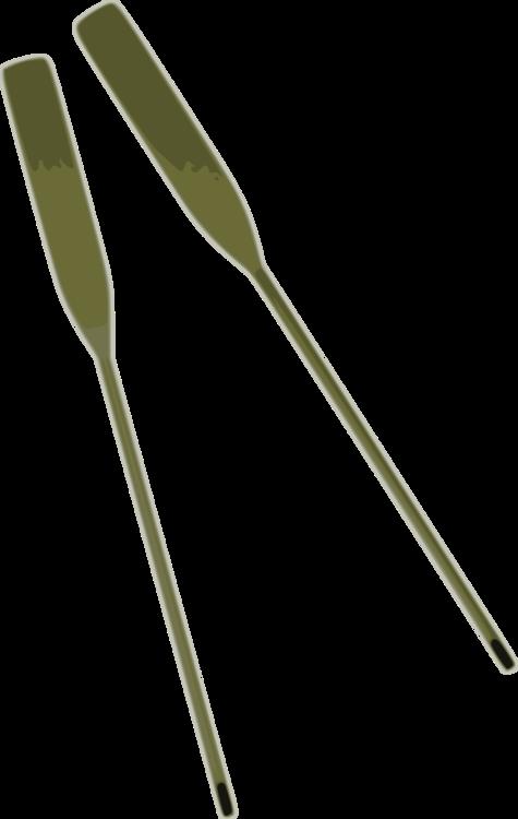 Plant Stem,Grass,Leaf