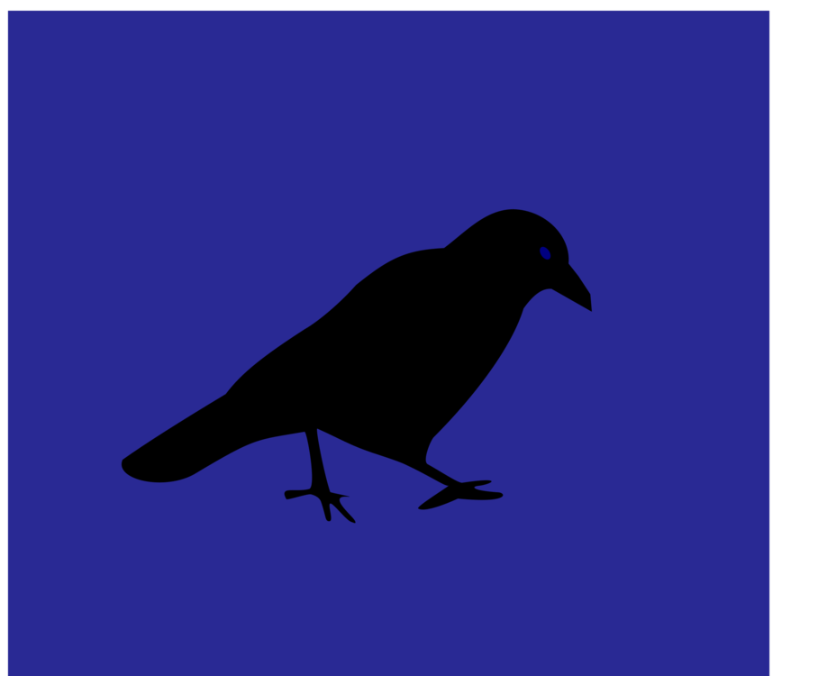 Crow Like Bird,Silhouette,American Crow