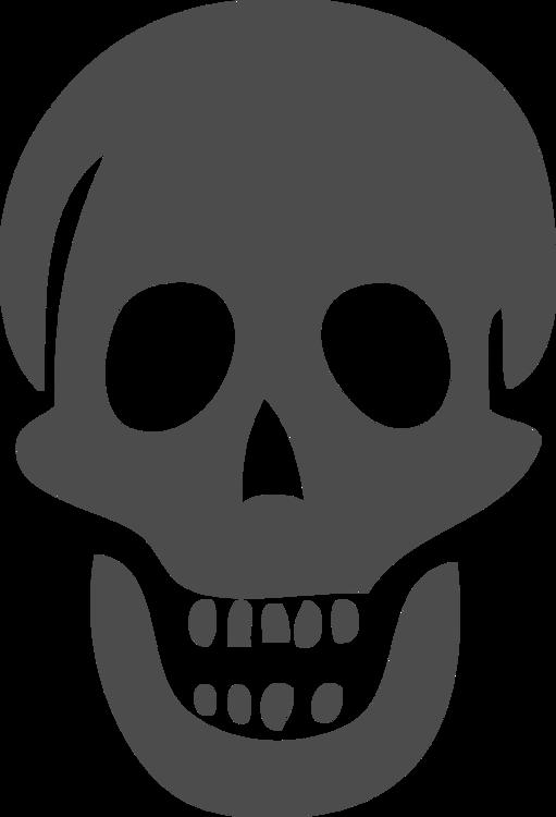 Head,Skull,Jaw