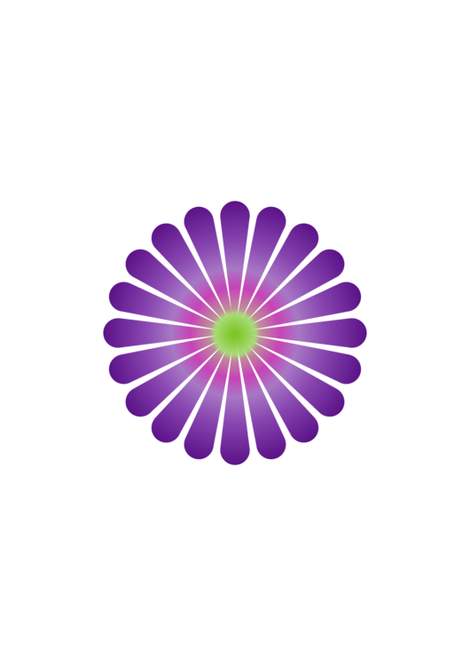 Flower,Symmetry,Purple