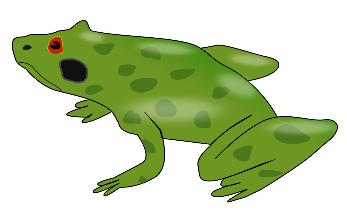 Plant,Grass,Toad