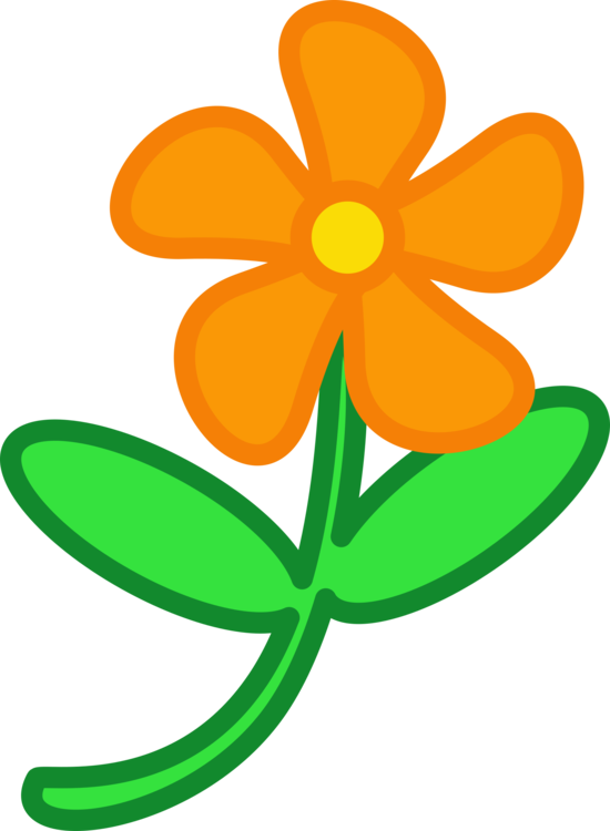 Flower,Leaf,Petal
