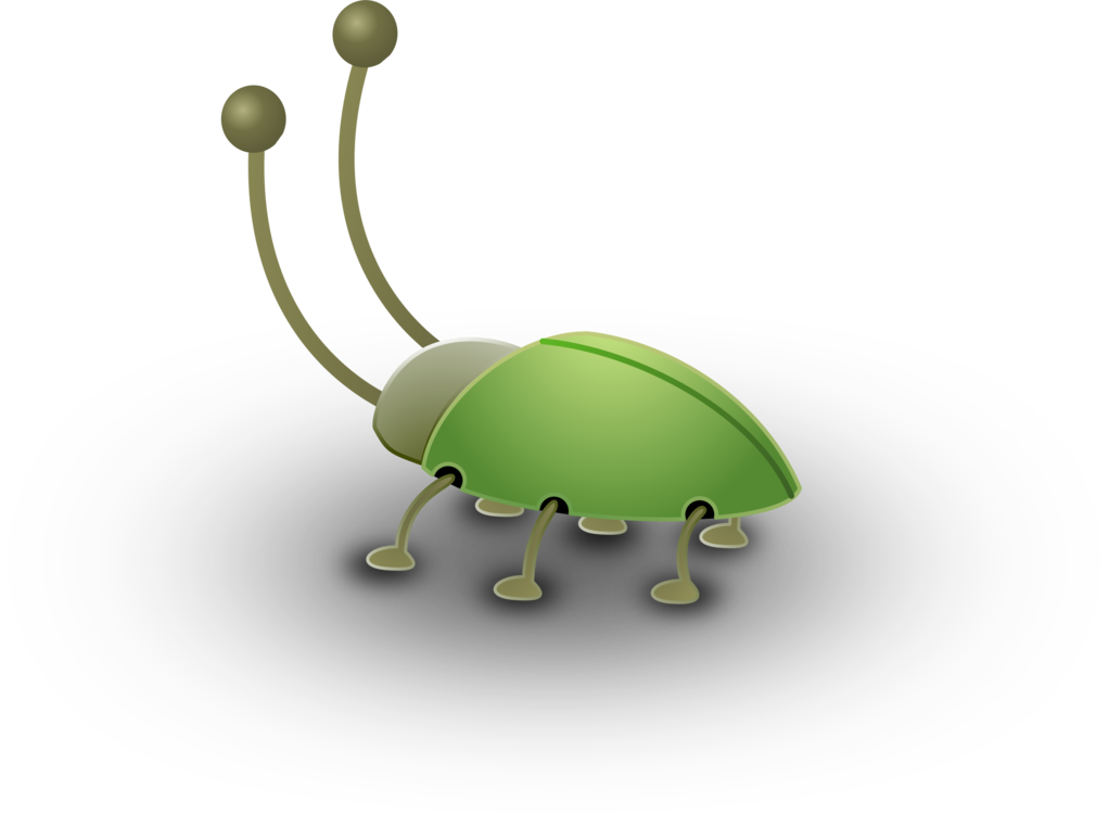 Computer Wallpaper,Ladybird,Invertebrate