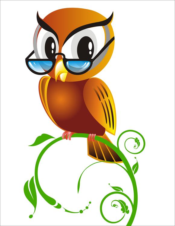 Owl,Beak,Vertebrate