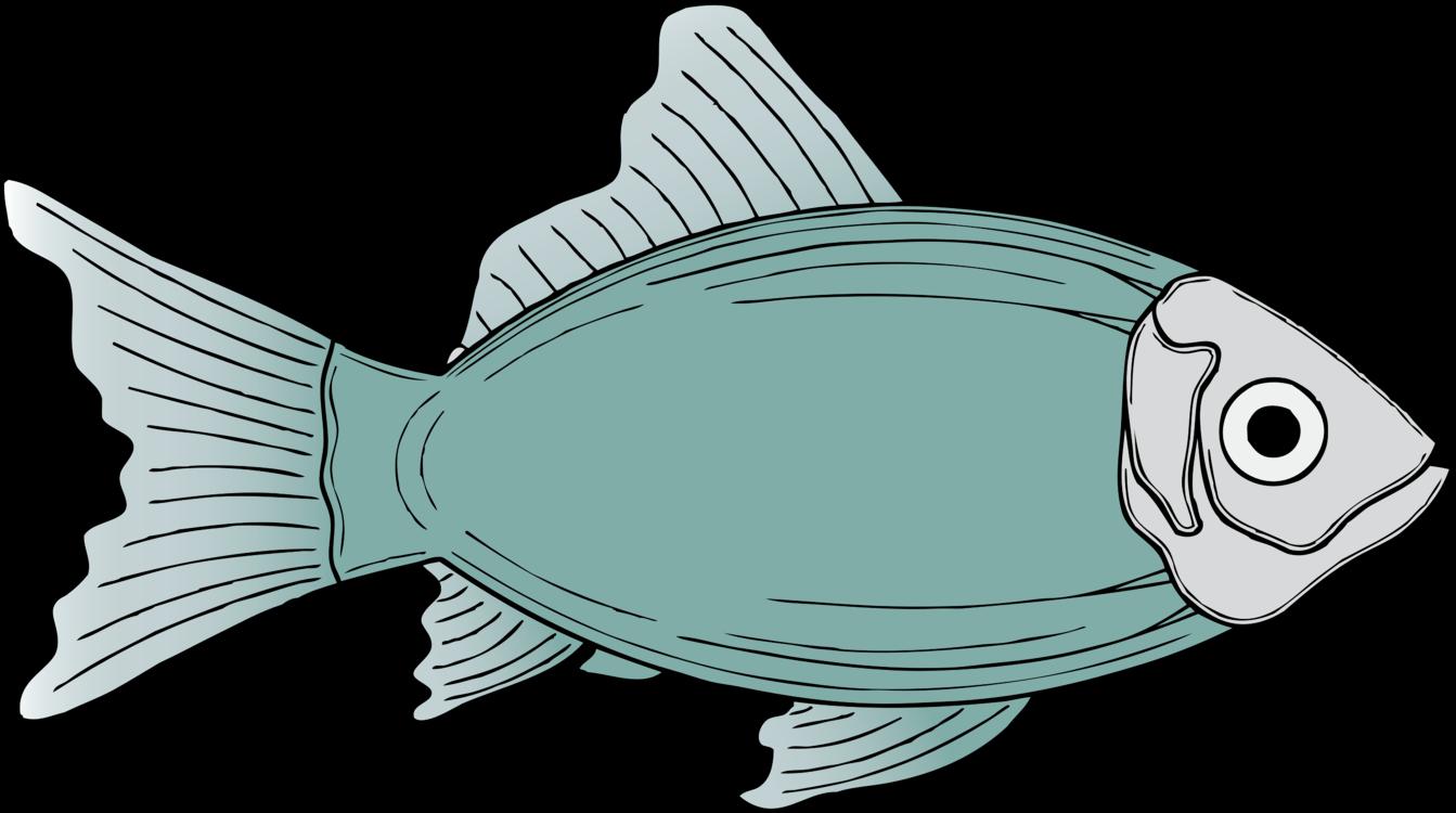 Marine Biology,Fish,Sea Turtle