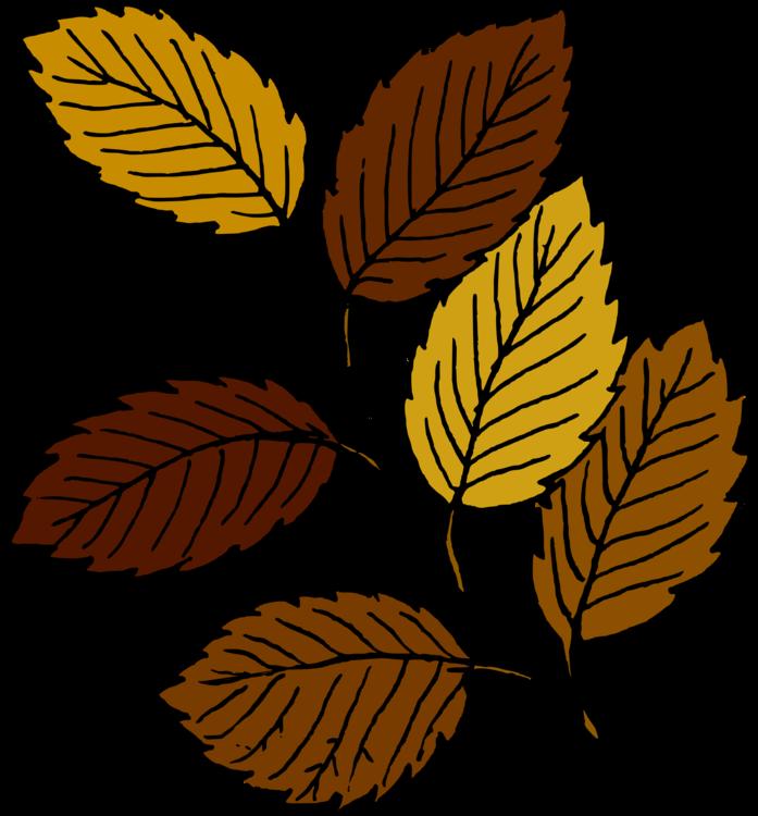 Plant,Leaf,Artwork