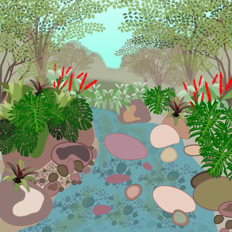 Pond,Plant,Flora