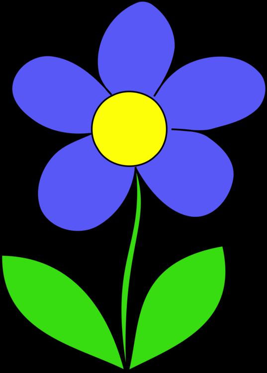 Flora,Leaf,Symmetry