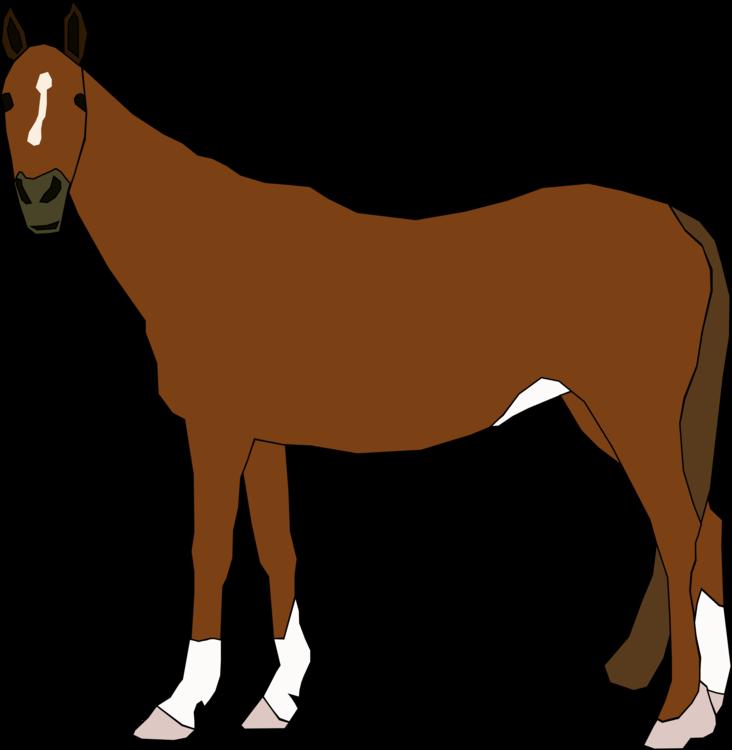 Donkey,Pony,Livestock