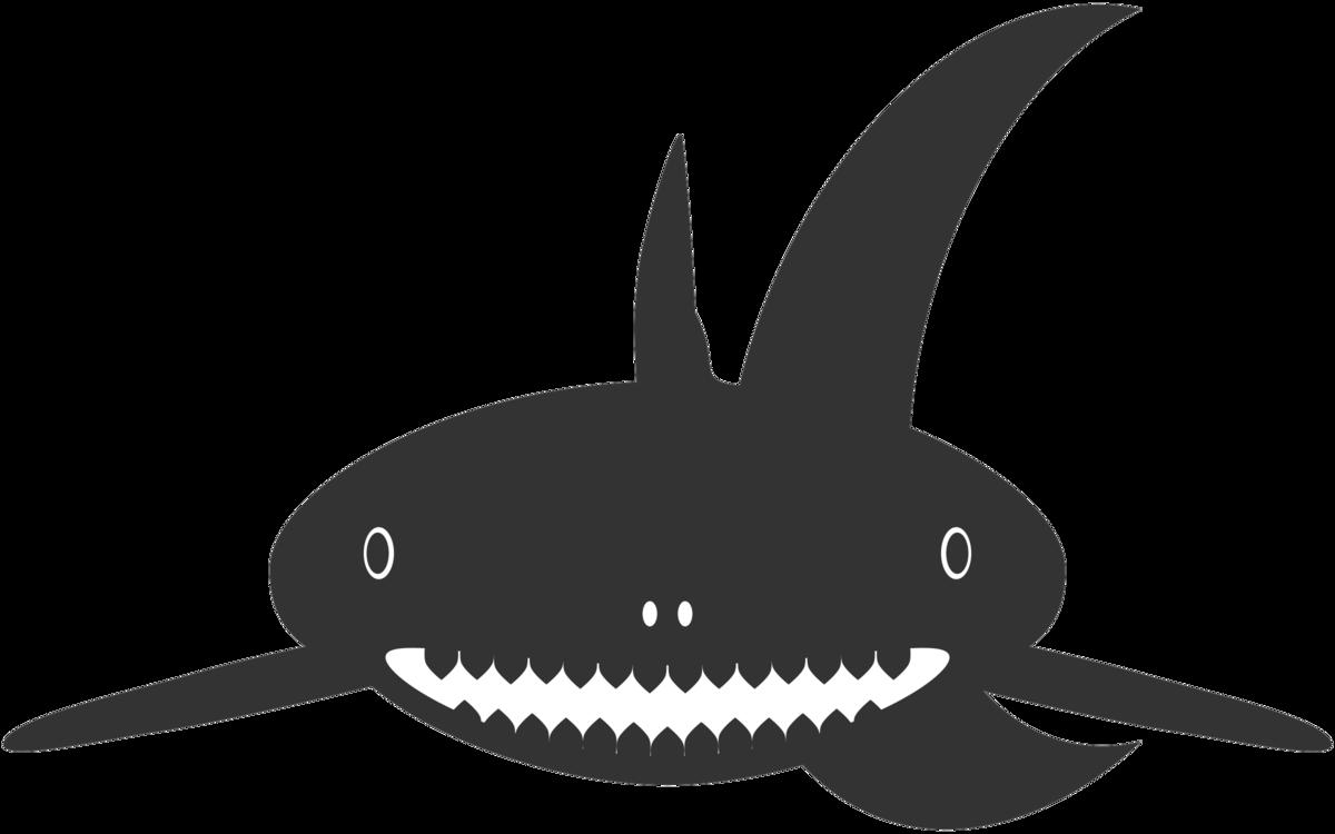Shark,Fish,Vertebrate