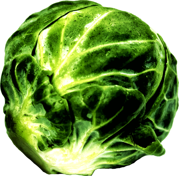 Savoy Cabbage,Lettuce,Food