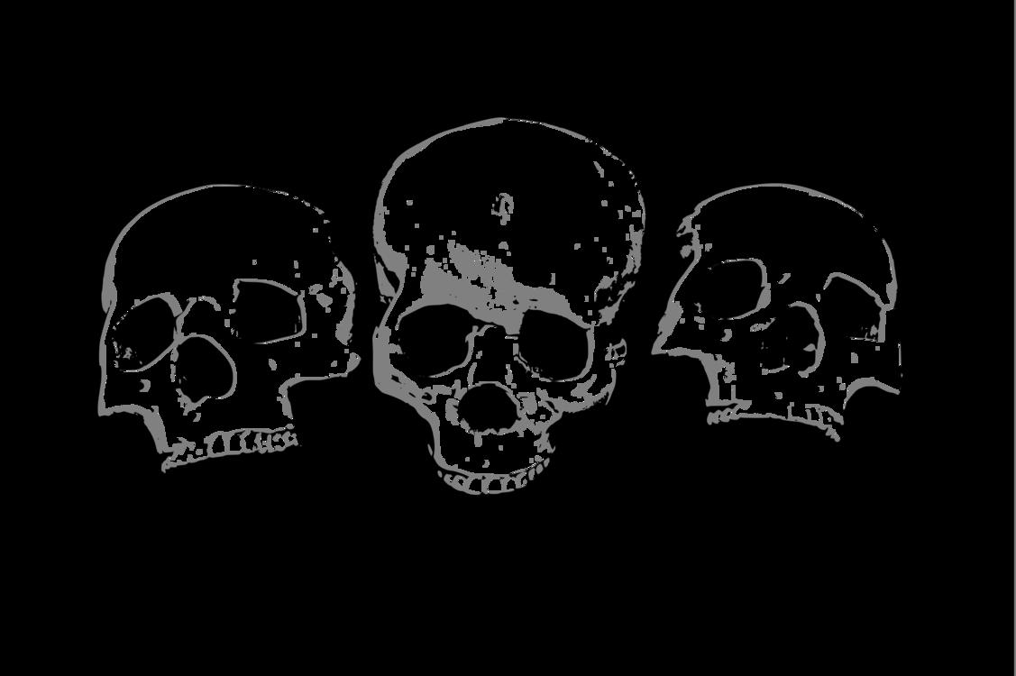Skeleton,Skull,Monochrome Photography