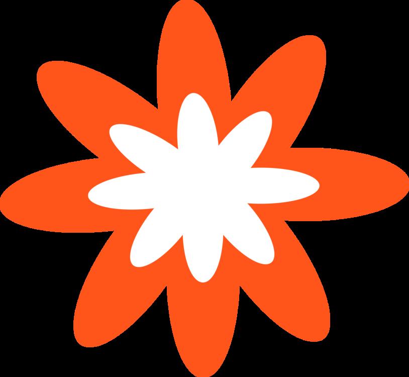 Flower,Leaf,Symmetry