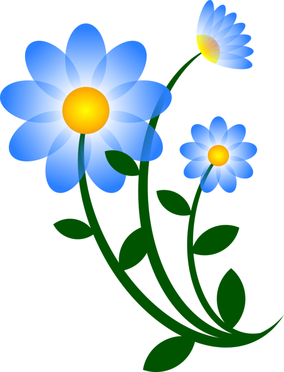 Plant,Flora,Petal