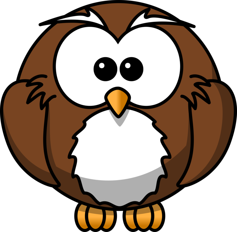 Owl,Artwork,Beak