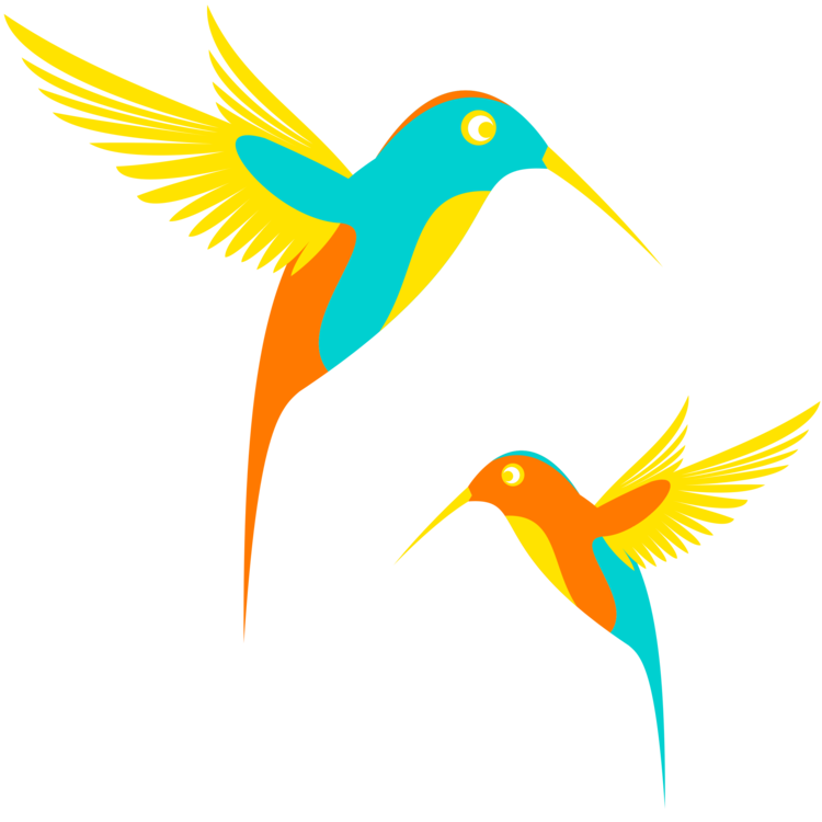 Sky,Pollinator,Bird