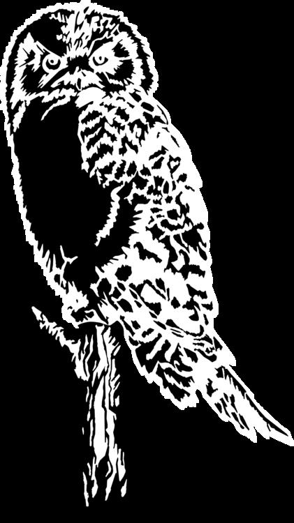 Owl,Art,Monochrome Photography